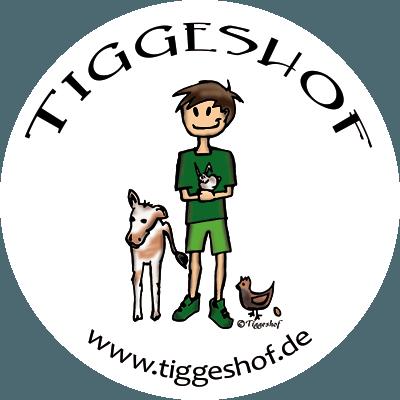tiggeshof_ainkhausen_slider1