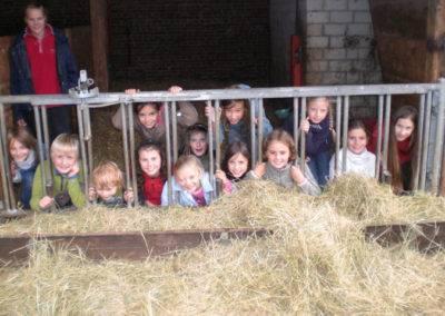 Kindergeburtstag Tiggeshof Arnsberg Ainkhausen