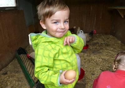 Eier suchen im Hühnerstall. Pflichtprogramm bei einem Besuch auf dem Tiggeshof.