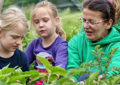 Lernen und Erleben: Landkinder-Gruppen auf dem Tiggeshof.