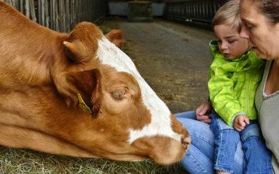 Unser neues Angebot: Mit der ganzen Familie auf den Bauernhof