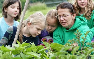 Wir wollen einen Bauernhof-Kindergarten gründen