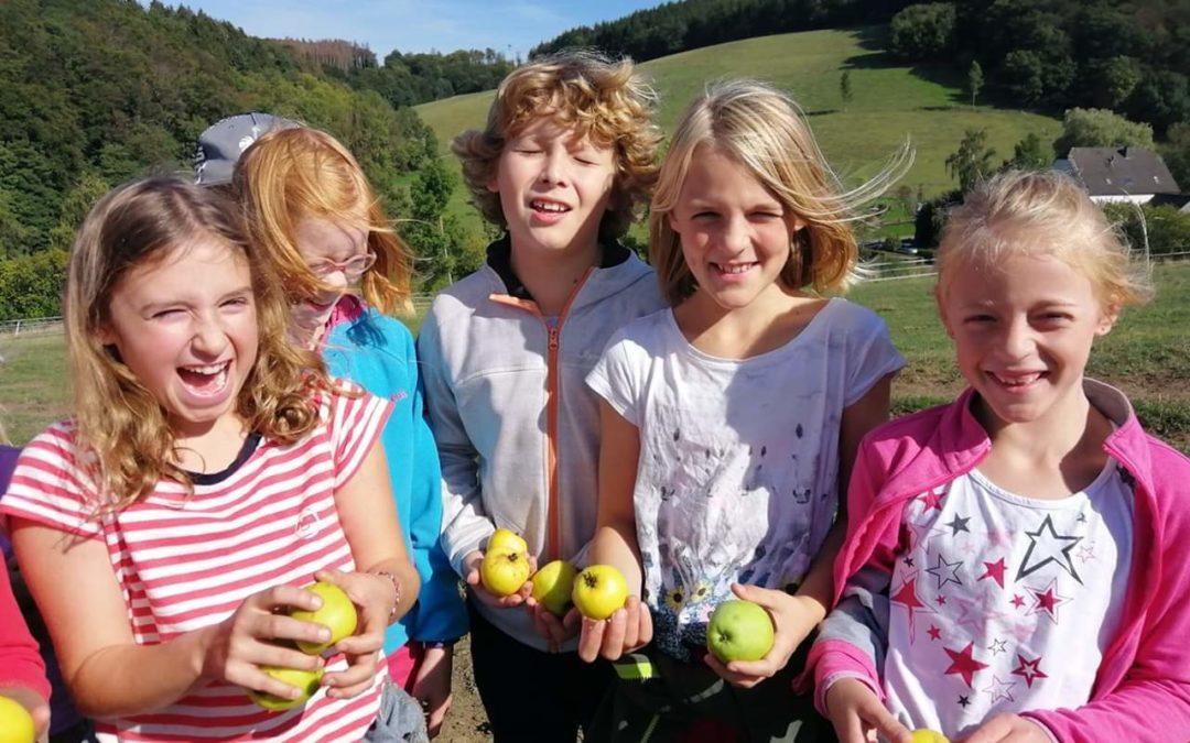 Apfelfest und Tag der offenen Tür am 3. Oktober 2019