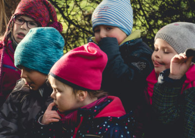 tiggeshof-landkinder-11-2019-40