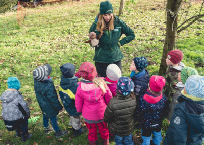 tiggeshof-landkinder-11-2019-45