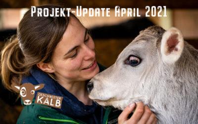 Update April 2021: Geschwisterkalb-Projekt auf dem Tiggeshof im Sauerland